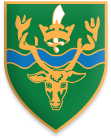 South Chingford School Shield